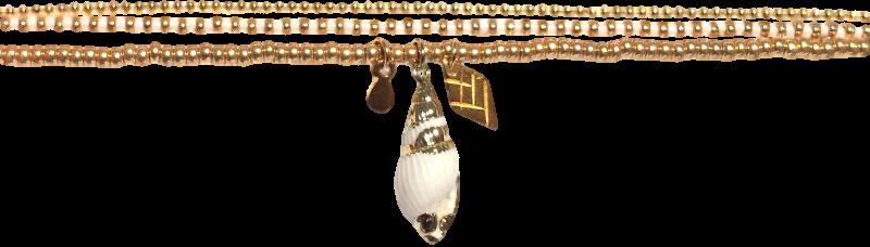 coquillage-naturel-dore